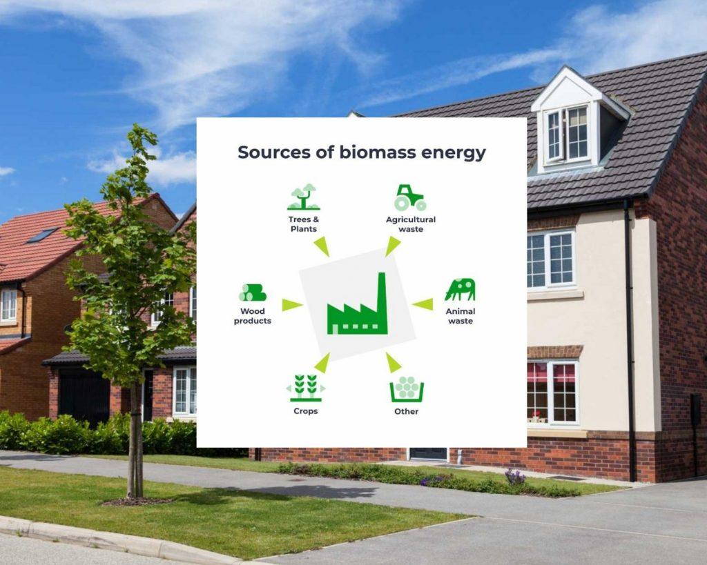 biomass energy sources explained